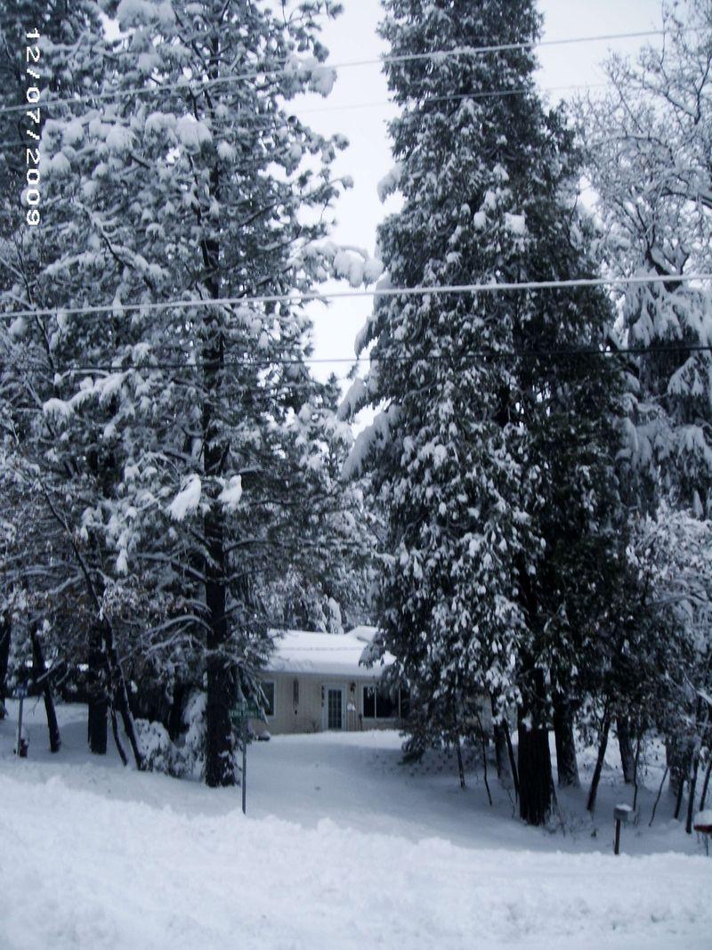 First snow 09 048